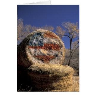 NA, los E.E.U.U., Colorado, Gunnison. Rollo patrió Tarjeta De Felicitación