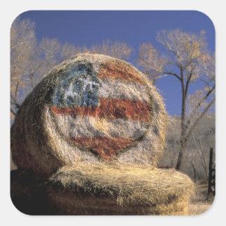 NA, los E.E.U.U., Colorado, Gunnison. Rollo Pegatina Cuadrada