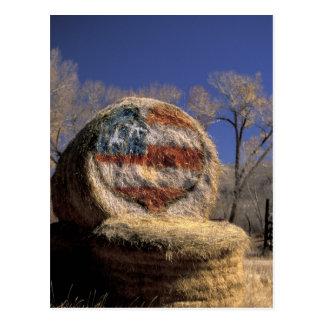 NA, los E.E.U.U., Colorado, Gunnison. Rollo Tarjeta Postal
