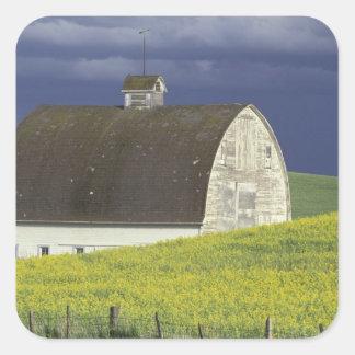NA, los E.E.U.U., Idaho, al sur de Genesse, campo Pegatina Cuadrada