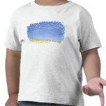 Na, los E.E.U.U., identificación, Grangeville, Camisetas