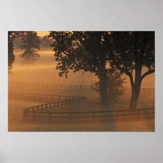 NA, los E.E.U.U., Kentucky. Salida del sol de nieb Posters