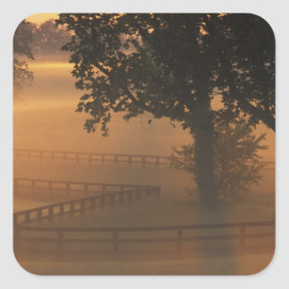 NA, los E.E.U.U., Kentucky. Salida del sol de Calcomania Cuadradas Personalizadas