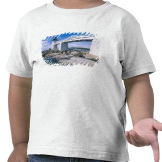 NA, los E.E.U.U., Maine, puerto Clyde.  Punto de Camisetas