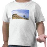 NA, los E.E.U.U., molino de viento de Tejas y Camisetas