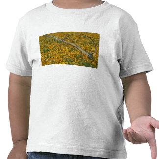 NA, los E.E.U.U., Oregon. Sistema de riego en Camiseta