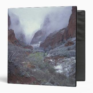 """NA, los E.E.U.U., Utah, Zion NP, tormenta de la Carpeta 1 1/2"""""""