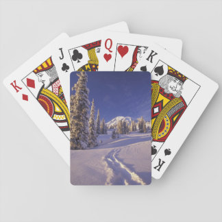 NA, los E.E.U.U., Washington, el Monte Rainier NP, Cartas De Póquer