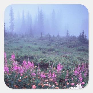 NA, los E.E.U.U., Washington, prado alpino de Calcomanía Cuadradas