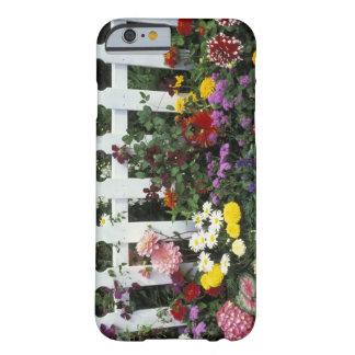 NA, los E.E.U.U., Washington, Sammamish, piquete Funda Barely There iPhone 6