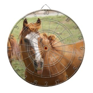 Na-Na Neigh Horse With Tongue Out Dart Game Dartboards