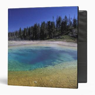 """NA, parque nacional de los E.E.U.U., Wyoming, Yell Carpeta 1 1/2"""""""