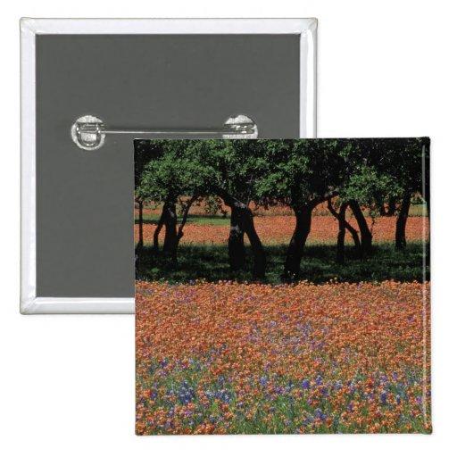 NA, Texas, Texas Hill Country, Buchan Dam, Pinback Buttons