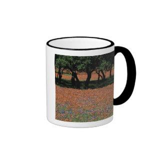 NA, Texas, Texas Hill Country, Buchan Dam, Mug