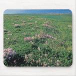 NA, USA, Alaska, Aleutian Island, Scenic with Mouse Pad