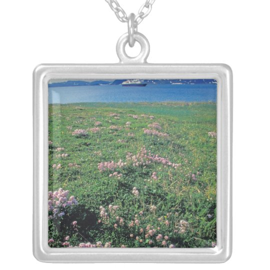 NA, USA, Alaska, Aleutian Island, Scenic with Silver Plated Necklace
