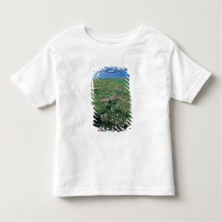 NA, USA, Alaska, Aleutian Island, Scenic with Toddler T-shirt