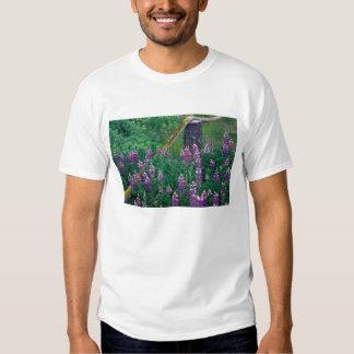 NA, USA, Alaska, Aleutian Islands, Unalaska, T-Shirt