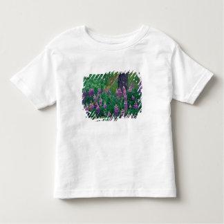 NA, USA, Alaska, Aleutian Islands, Unalaska, Toddler T-shirt