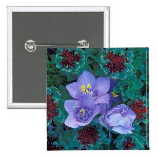 NA, USA, Alaska, Aleutian Islands, Wildflowers 2 Pinback Button