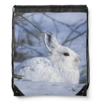 NA, USA, Alaska. Arctic National Wildlife Drawstring Backpack