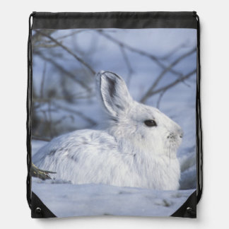 NA, USA, Alaska. Arctic National Wildlife Drawstring Backpack