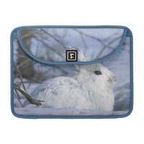 NA, USA, Alaska. Arctic National Wildlife MacBook Pro Sleeve
