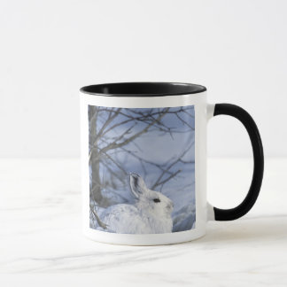 NA, USA, Alaska. Arctic National Wildlife Mug