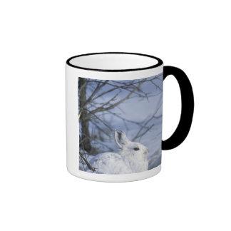 NA, USA, Alaska. Arctic National Wildlife Ringer Coffee Mug