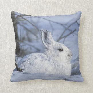 NA, USA, Alaska. Arctic National Wildlife Pillows