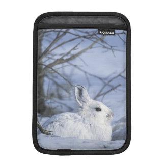 NA, USA, Alaska. Arctic National Wildlife Sleeve For iPad Mini