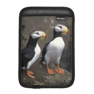 NA, USA, Alaska, Bering Sea, Pribilofs, St. 2 iPad Mini Sleeve