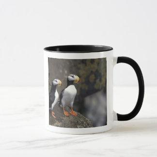 NA, USA, Alaska, Bering Sea, Pribilofs, St. 2 Mug