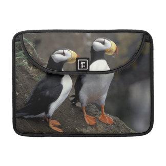 NA, USA, Alaska, Bering Sea, Pribilofs, St. 2 Sleeve For MacBook Pro