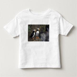 NA, USA, Alaska, Bering Sea, Pribilofs, St. 2 Toddler T-shirt