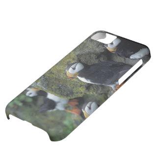 NA, USA, Alaska, Bering Sea, Pribilofs, St. iPhone 5C Case