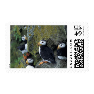 NA, USA, Alaska, Bering Sea, Pribilofs, St. Postage Stamps