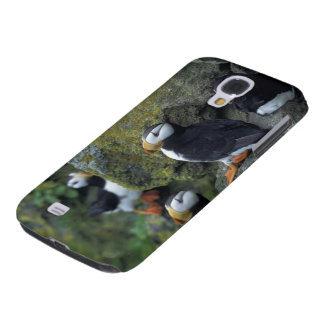 NA, USA, Alaska, Bering Sea, Pribilofs, St. Samsung Galaxy S4 Cover