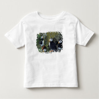 NA, USA, Alaska, Bering Sea, Pribilofs, St. T Shirt