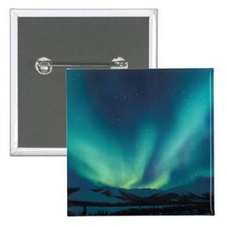 NA, USA, Alaska, Brooks Range, Curtains of green Pinback Button
