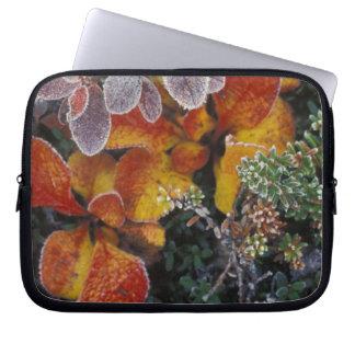 NA, USA, Alaska. Denali National Park. Bearberry 3 Laptop Sleeve