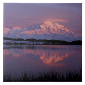 NA, USA, Alaska. Denali National Park. Mt Large Square Tile