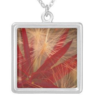 NA, USA, Alaska, Denali NP, Fireweed and wild Square Pendant Necklace