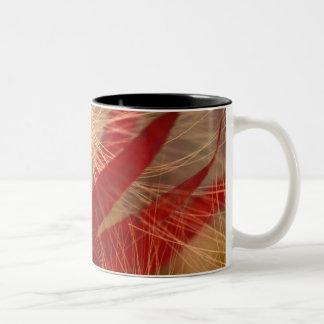NA, USA, Alaska, Denali NP, Fireweed and wild Two-Tone Coffee Mug