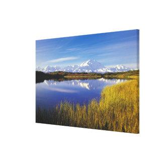 NA, USA, Alaska, Denali NP Mt. McKinley in Stretched Canvas Print