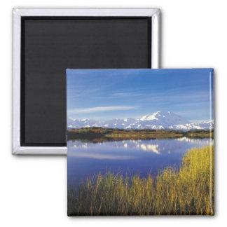 NA, USA, Alaska, Denali NP Mt. McKinley in Magnet