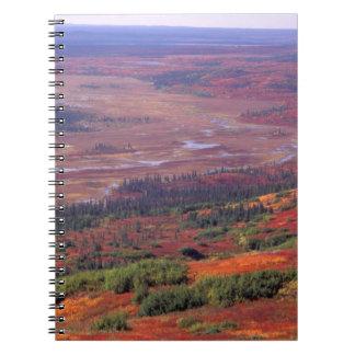 NA, USA, Alaska, Denali NP, View of McKinley Notebook