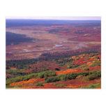 NA, USA, Alaska, Denali NP, View of McKinley Postcard