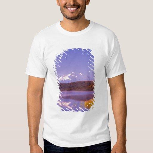 NA, USA, Alaska, Denali NP, Wonder Lake, Mt. T-shirt