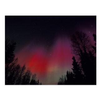 NA, USA, Alaska, Fairbanks. Curtains of purple, Postcard